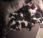 Pups Loebas en Doris geboren